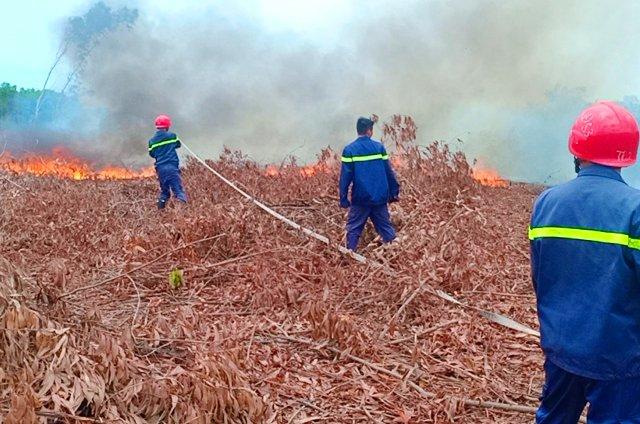 Đã khống chế đám cháy ở Trường bắn Phú Bài
