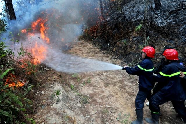 Người dân viết thư cảm ơn lực lượng phòng cháy chữa cháy và cứu nạn cứu hộ