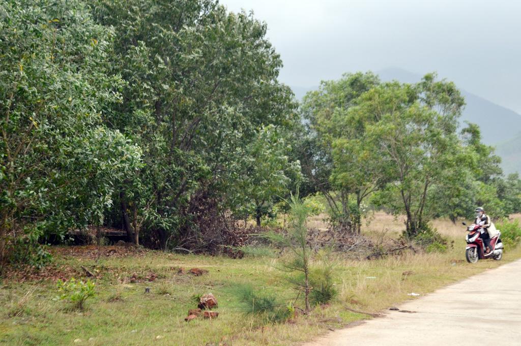 Thanh tra việc giao đất, cấp giấy chứng nhận quyền sử dụng đất ở Lộc Vĩnh: Phát hiện nhiều sai phạm