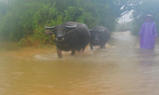 Phong Chương nước rút, Phú Lộc & Ma Nê vẫn phải di chuyển bằng thuyền