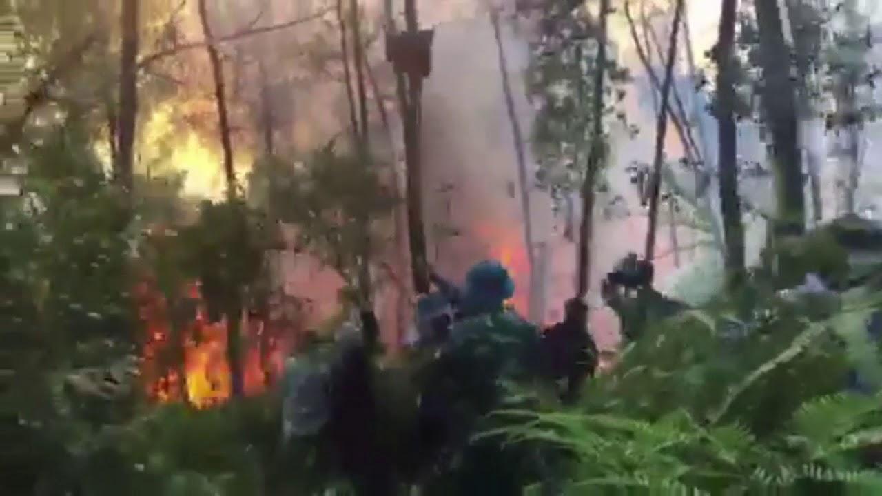 Tập trung điều tra nguyên nhân các vụ cháy rừng ở Hương Thủy