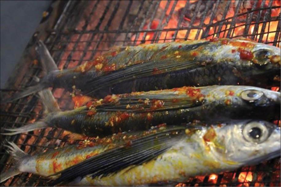 Về Tháp Chàm, ăn cá cồ nướng