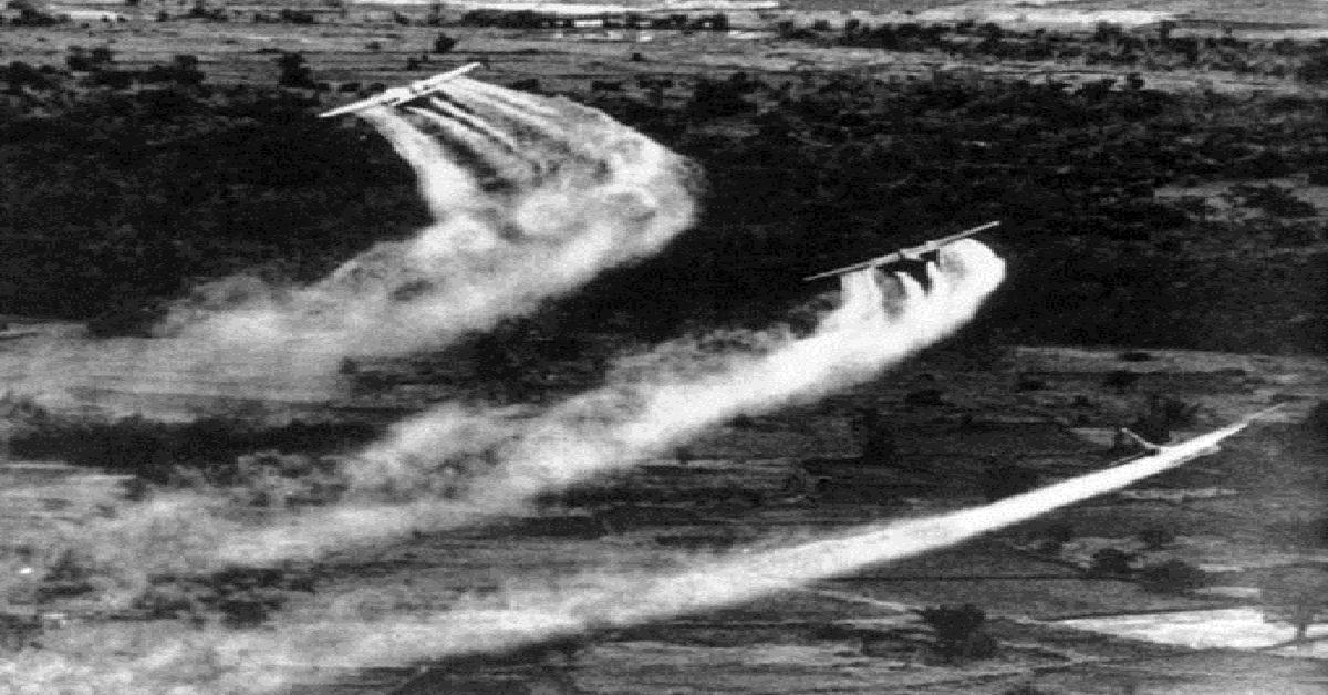 Chiến tranh đã ảnh hưởng đến môi trường Việt Nam như thế nào?