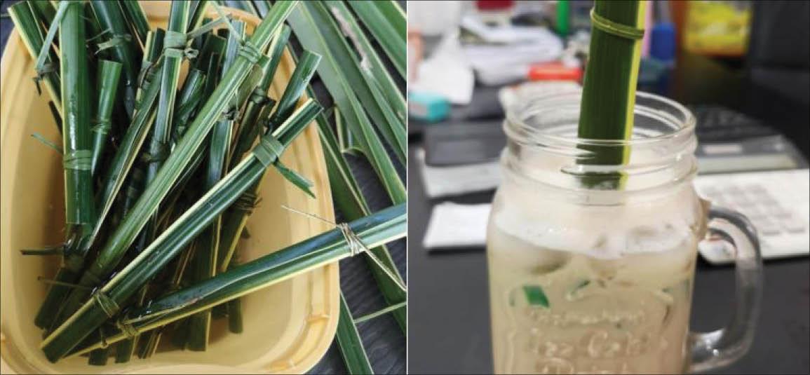 Philippines: Độc đáo quán cà phê sử dụng ống hút bằng lá cọ