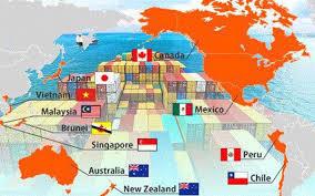 CPTPP mở rộng cửa cho doanh nghiệp Việt đầu tư vào Canada